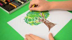 The children's drawing on paper.   tree, sketch, line, oak, plant, abstract, grass, isolated, nature, park, background, art, forest, big, trunk, paint, wood, growth, stylized, greenery, green, single, environment, ecology, pattern, creative, cartoon, branch, modern, beautiful, decorative, design, drawing, element, floral, foliage, garden, hatching, illustration, natural, outdoor, season, stain, stem, symbol, verdure, children, child, spring, summer