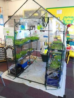 I would use this ideas because many activities could be based around it. For example students could learn to measure how tall a plant grows or make a science project from it. Play Based Learning, Project Based Learning, Role Play Areas, Indoor Greenhouse, Stem Science, Science Ideas, Outdoor Classroom, Play Centre, Outdoor Learning