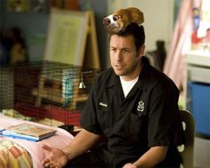 Adam Sandler is unlikely to be mistaken for Mary Poppins, but he's apparently got his hands on her playbook. In BEDTIME STORIES, a spoonful of sugar helps the comedy go down.Storyteller Adam Sandler hams it up with a hamster in. Adam Sandler, Bedtime Stories Movie, Biography Film, Kevin James, Ending Story, Big Daddy, Music Tv, Screenwriting, American Actors