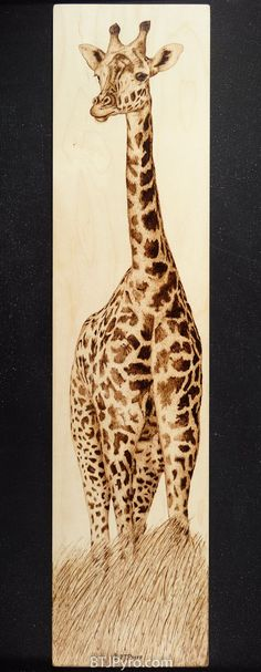 Tall Giraffe - Woodburning by brandojones on DeviantArt