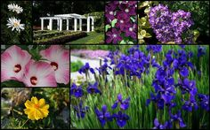 "http://pinterest.com/pin/create/button/?url=http://fineartamerica.com/featured/gardens-of-beauty-kay-novy.html=http://fineartamerica.com/images-medium-5/gardens-of-beauty-kay-novy.jpg  ""Gardens Of Beauty"" by Kay Novy.  http://kay-novy.artistwebsites.com/featured/gardens-of-beauty-kay-novy.html"