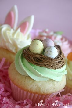 Easter Cupcakes - I like the bunny ears peeking out of the cupcake in the background.