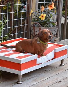 LOVE: modern pet bed striped cushion with instructions on how to build.I would love to DIY this dog bed for my Dane. Diy Dog Bed, Diy Bed, Dog Rooms, Weenie Dogs, Doggies, Pet Furniture, Animal Projects, Art Projects, Sewing Projects