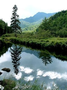 Adirondack Reflection -The Adirondacks one of the most beautiful places on earth.
