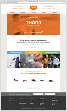Thorn Pest Solutions / clean banner, central logo, small palette, fat banner / design by Roby Fitzhenry