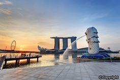 The Merlion Singapore - Must-see Singapore Attraction