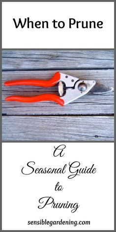 Organic Gardening Ideas When to Prune, a seasonal guide to pruning with Sensible Gardening - Knowing when to prune can cause grief. Plants fall into a season for pruning, spring, summer, fall or winter. This seasonal guide to pruning should help.