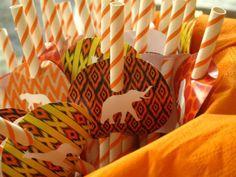 Safari + Zoo Themed 3rd Birthday Party