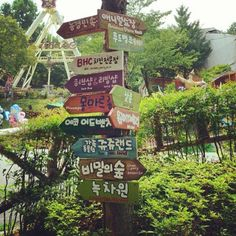 Herb Hillz, an easy day trip during the hot summers in Daegu, South Korea.