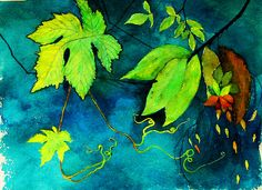 Watercolour Study of Leaves by ANNETTE HAGGER