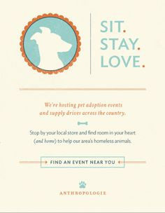anthropologie email / again- another amazing design / brand marketing / event / dog - sit stay class