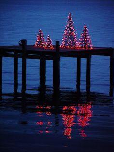 Sally Lee by the Sea Coastal Lifestyle : Coastal Christmas Beach Christmas, Coastal Christmas, Little Christmas, Beautiful Christmas, Winter Christmas, Winter Holidays, All Things Christmas, Tropical Christmas, Red Christmas Lights