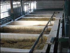 coffee processing plant, Doka Estate, Alajuela, Costa Rica, Centro America, coffee