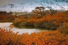 Patagonia...Argentina