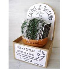 Cactus de ganchillo - Erizocactus Sensibolis Crochet Cactus, Cacti And Succulents, Craft, Design, Cactus Plants, Diy, Succulents, Plants, Crochet Crafts