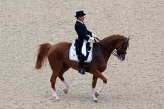 71 and in the Olympics.  I love that.  Hoketsu first competed in the 1964 Tokyo Olympics, 48 years ago. With his horse Whisper, he competed in the Equestrian Grand Prix Dressage.  He may not compete in the next Olympics -- because his horse will be too old!