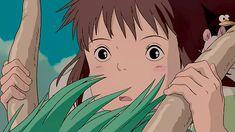 Chihiro, Good luck - Till we meet again!