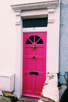 Bright Fox Door- Windmill Hill Bristol