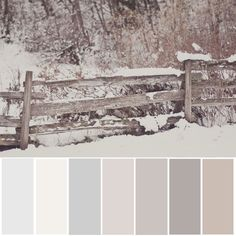 Neutral color palette.