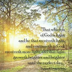 """""""This verse perfectly summarizes our purpose on earth. Eternal progress simply means increasing in light."""" -Elder Larry R. Verse is Doctrine and Covenants New Testament Books, Old And New Testament, Lds Quotes, Religious Quotes, Mission Quotes, Lds Seminary, Doctrine And Covenants, Lds Scriptures, Light Of Christ"""