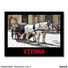 Shop Vienna Fiaker with White Horses - Postcard created by stdjura. Horse Drawn, White Horses, Vienna, Austria, Switzerland, Photography, Animals, Animales, Animaux