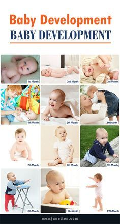 Baby Development Month By Month
