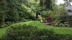 Renovate Your Lawn Like A Landscaper