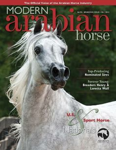 Issue #6 2013 #MAH #ArabianHorseAssociation