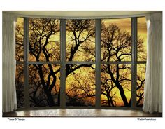 #Forest Bay #Window View #Art
