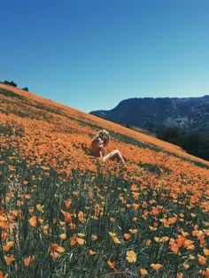 Wild & Free Blog || Adventures on Grass Mountain || 03.28.16