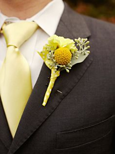 groom's attire: pale yellow tie, gray suit, billy-ball, yellow rose, and seeded eucalyptus boutonniere