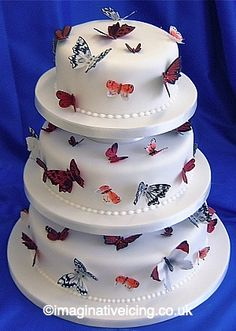 INSECTS-ON-CAKES ALERT! (So many butterflies! From Imaginative Icing.)