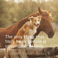 """The only thing that truly heals people is unconditional love."" Elizabeth Kubler Ross Quote"