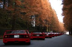 Ferrari F40's in Japan