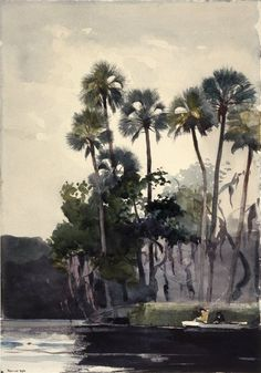 Homosassa River, 1904, Winslow Homer. Brooklyn Museum