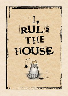 Cat card - I rule the house GREY