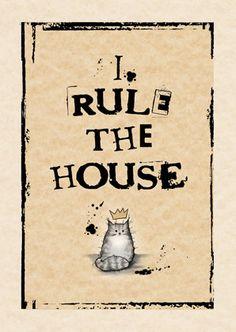 Carte de CAT - je règle la maison gris