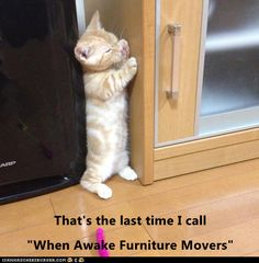 """That's the last time I call """"When Awake Furniture Movers"""" http://cheezburger.com/9070769408"""