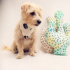 Brushstroke Print Dog Bandana with Neon Green by PupTartHandmade