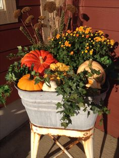 Fall planting in an old washtub.