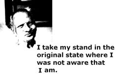 NISARGADATTA MAHARAAJ; To understand Him one has to take at least a temporarary stand as WITNESSING CONSCIOUSNESS (SEER). Maharaaj always was established as the SEER . (The ever present, changeless, self luminous AWARENESS)