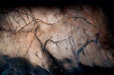 Cueva de El Castillo Art Pariétal, Paleolithic Art, Rock Art, The Rock, Archaeology, Different Colors, Primitive, Cave, Drawings