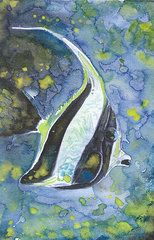 Watercolor Tropical Animal Featured Images - Tropical Fish in Blue  by Susan Powell