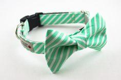 Bright Mint Stripes Dog Bow Tie Collar