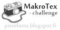 Koivikon Katveessa: Tulostettavaa materiaalia varhaiskasvatukseen Challenges, Education, Onderwijs, Learning