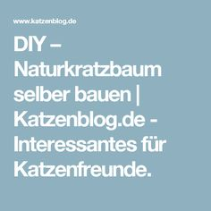 DIY – Naturkratzbaum selber bauen  |   Katzenblog.de - Interessantes für Katzenfreunde.