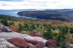 Top Places to Camp in the US: Acadia National Park, Maine
