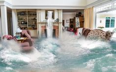 Need water damage services? Call our water damage cleanup company for water damage repair & Fuquay-Varina NC water damage restoration services Submersible Sump Pump, Flooded Basement, Damp Basement, Flooded House, Water Damage Repair, Flood Damage, Flood Risk, Flood Insurance, Houses