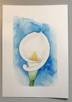 High quality print of an Original Calla Lilly painting. Each print is individually signed. Lilly Flower Drawing, Lilies Drawing, Flower Art, Lily Painting, Fabric Painting, Watercolor Flowers, Watercolor Paintings, Watercolour Drawings, Calla