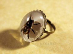 REAL Honey Bee set in resin Ring brass size adjustable white resin background taxidermy garden Insect spring jewelry real bug preserved